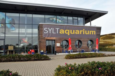 Foto om Sylt Aquarium in Westerland